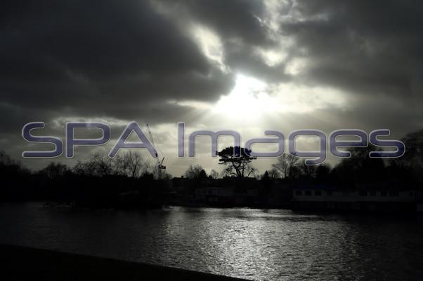 Tree Silhouette Richmond 211218D-6633.JPG
