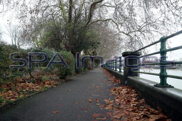 Pathway Leaves Fulham 281118D-0036.JPG